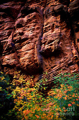 Photograph - Utah - Rock Face 1 by Terry Elniski