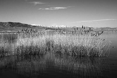 Utah Lake And Wasatch Mountains Art Print by Tracie Kaska