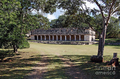 Photograph - Uxmal Mexico Columns Group by Shawn O'Brien