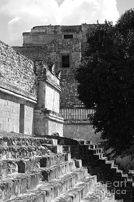 Photograph - Uxmal Mexico Ruin Steps And Top Of Pyramid Of The Magician Black And White by Shawn O'Brien