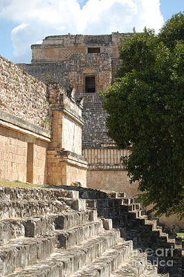 Photograph - Uxmal Mexico Ruin Steps And Top Of Pyramid Of The Magician by Shawn O'Brien