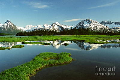 Photograph - Valdez  Alaska by Frank Townsley