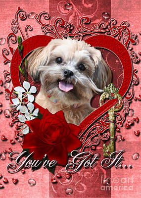 Shih-poo Digital Art - Valentines - Key To My Heart Shihpoo by Renae Laughner