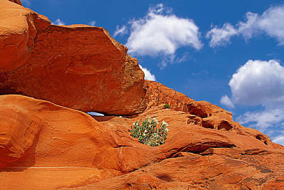 Valley Of Fire - Adventure In Color And Beauty Art Print by Christine Till