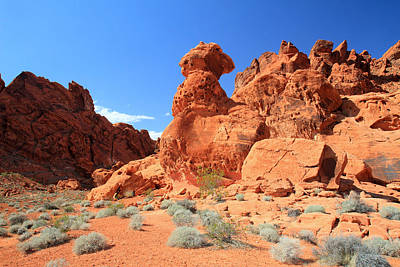 Photograph - Valley Of Fire State Park by Pierre Leclerc Photography