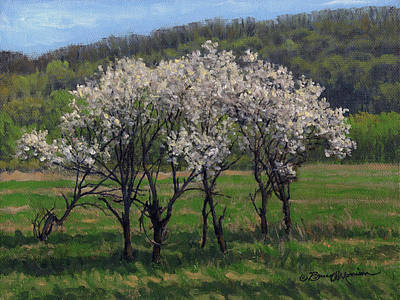Painting - Valley Plum Thicket by Bruce Morrison