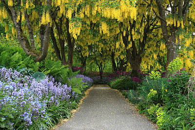 Photograph - Van Dusen Gardens by Pierre Leclerc Photography