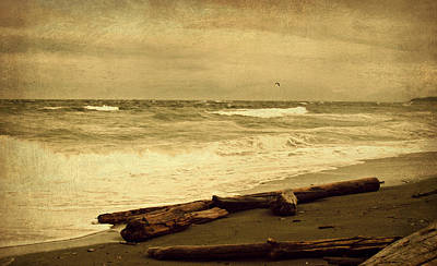 Vancouver Island Waters Sepia Original by Marilyn Wilson