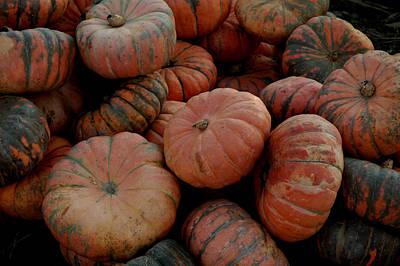 Halloween Photograph - Varied Pumpkins by LeeAnn McLaneGoetz McLaneGoetzStudioLLCcom