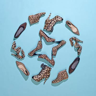 Y120817 Photograph - Various Leopard Print Shoes Arranged In A Pattern by Larry Washburn