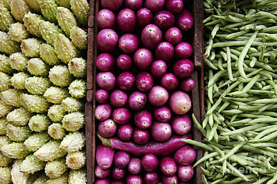 Vegetable Triptych Print by Jane Rix