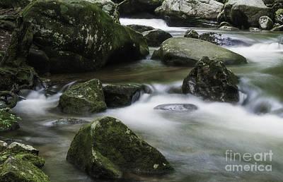 Photograph - Velvet Green Jones Gap by David Waldrop