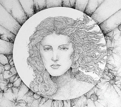 Drawing - Venus by Danielle Scott