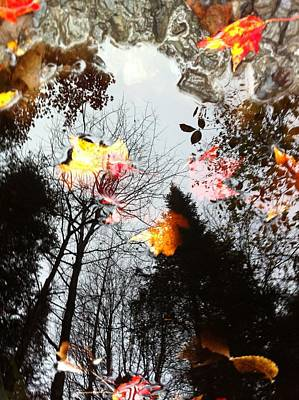 Vermont Leaf And Water Submerged Above Art Print by Elijah Brook
