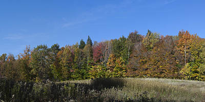 24x48 Photograph - Vermont Woodland Meadow 1 Of 2 by Gregory Scott