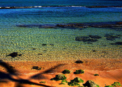 Photograph - Vibrant Colors Of The Ocean by Sheila Kay McIntyre
