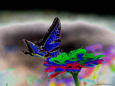 Digital Art - Vibrant by Kimmary MacLean