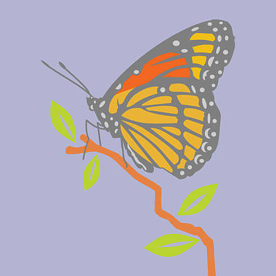 Viceroy Butterfly Art Print