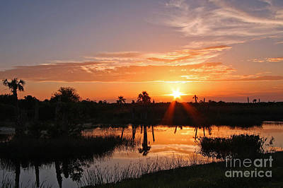 Viera Wetlands Sunset Art Print by Jennifer Zelik