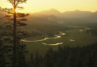 View At Dawn Of The Tuolumne River Art Print by Phil Schermeister
