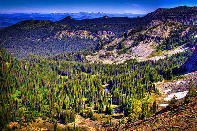 Photograph - View From Sourdough Ridge On Mt Rainier by David Patterson