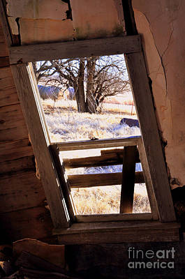 Photograph - View From The Farm by Anjanette Douglas