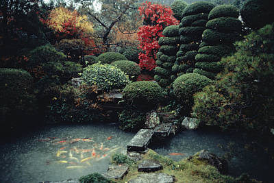 Natural Forces Photograph - View Of A Private Garden And Koi Pond by Sam Abell