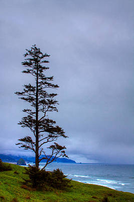 Photograph - View Of Cannon Beach From Ecola State Park by David Patterson