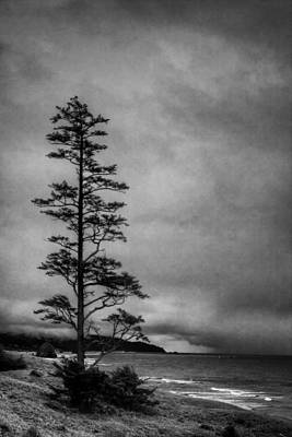 Monotone Photograph - View Of Cannon Beach From Ecola State Park II by David Patterson