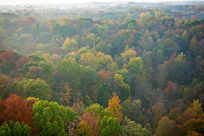 Photograph - View Of Fall From Above by Anthony Doudt