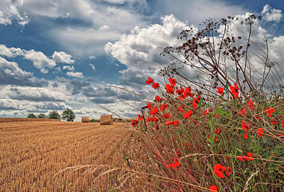 Bale Photograph - View Of Summer Landscape by All images taken by Steve Cole