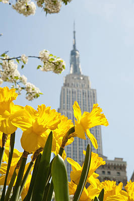 Views Of The Empire State Building And Art Print by Axiom Photographic
