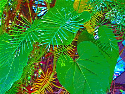 Vine Foliage Art Print