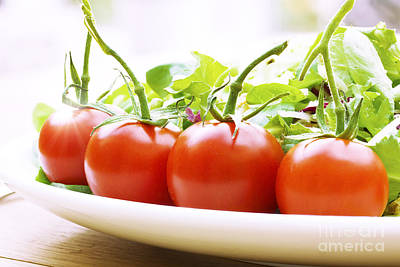 Romaine Photograph - Vine Tomatoes On A Salad Plate by Simon Bratt Photography LRPS