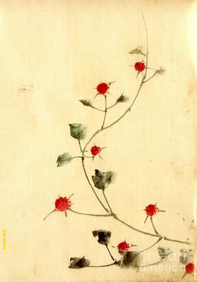 With Red Photograph - Vine With Red Blooms 1840 by Padre Art