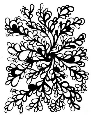 Abstract Drawing - Vines by HD Connelly