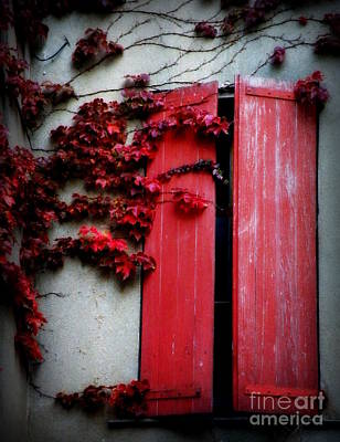 Vines On Red Shutters Art Print