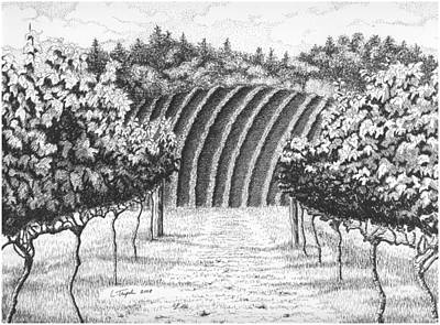 Drawing - Vineyard by Lawrence Tripoli