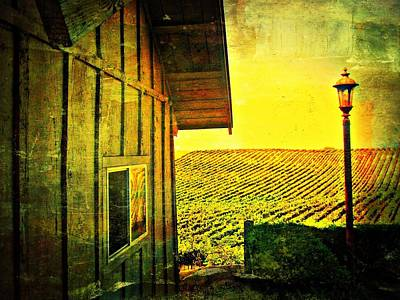 Vineyard Reflection Art Print by Kevin Moore