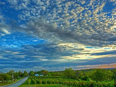 Vineyard Sunset II Original