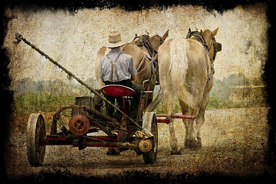 Vintage Amish Life D0064 Art Print by Wes and Dotty Weber