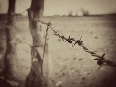 Ranch Life Photograph - Vintage Barbed Wire Fence by Megan Chambers