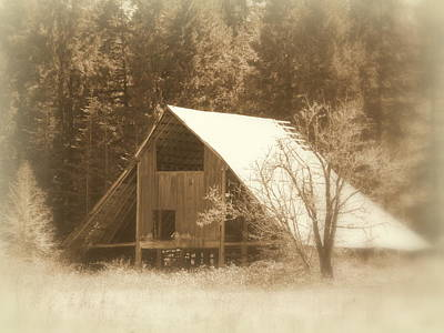 Photograph - Vintage Barn Sepia by Cindy Wright