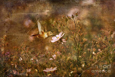 Vintage Beauty In Nature  Art Print by Susan Gary