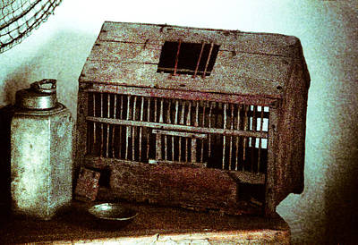 Photograph - Vintage Bird Cage by Emanuel Tanjala