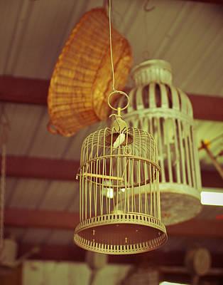 Vintage Birdcages Art Print by Sonja Quintero