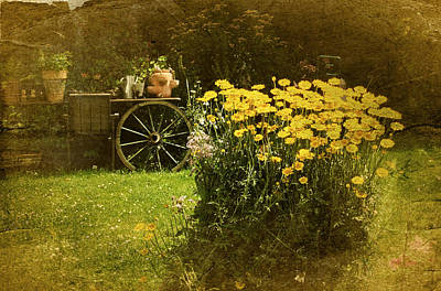 Wagon Wheels Photograph - Vintage Carden by Richard Cummings
