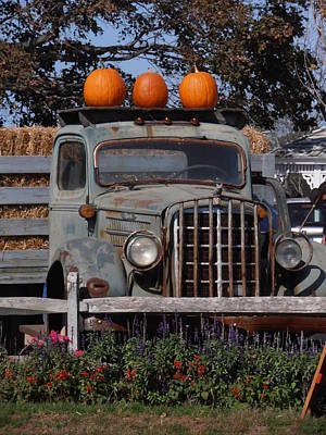 Vintage Harvest Art Print by Kimberly Perry