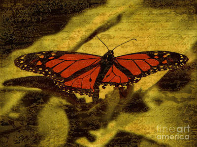 Photograph - Vintage Monarch by Karen Lewis