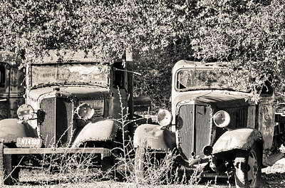 Photograph - Vintage Old Trucks Black And White by Connie Cooper-Edwards
